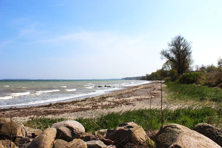 Strand in Norgaardholz