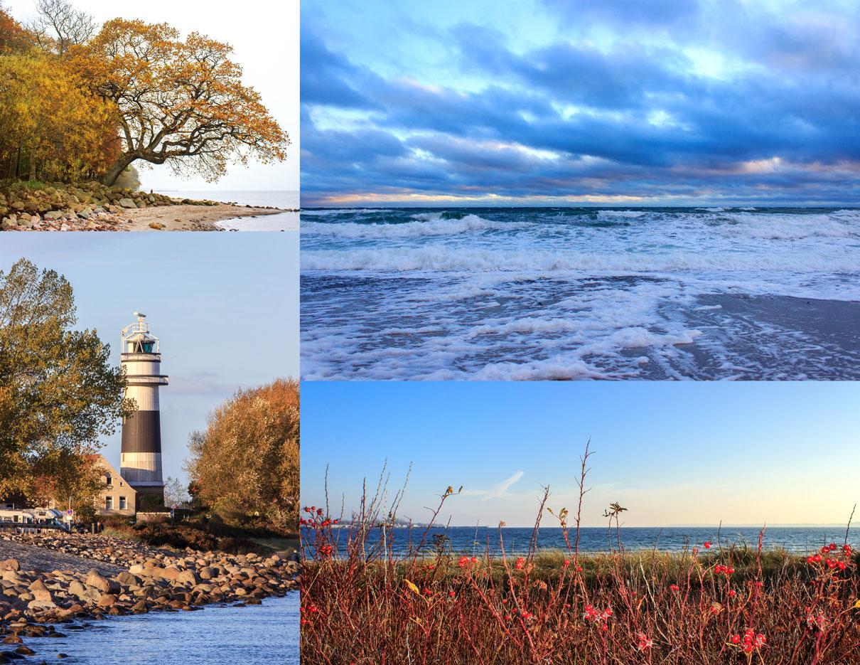 Collage mit vier Fotos - Wellen - Leuchtturm in Bülk - Sträucher am Strand - Herbstlicher Baum