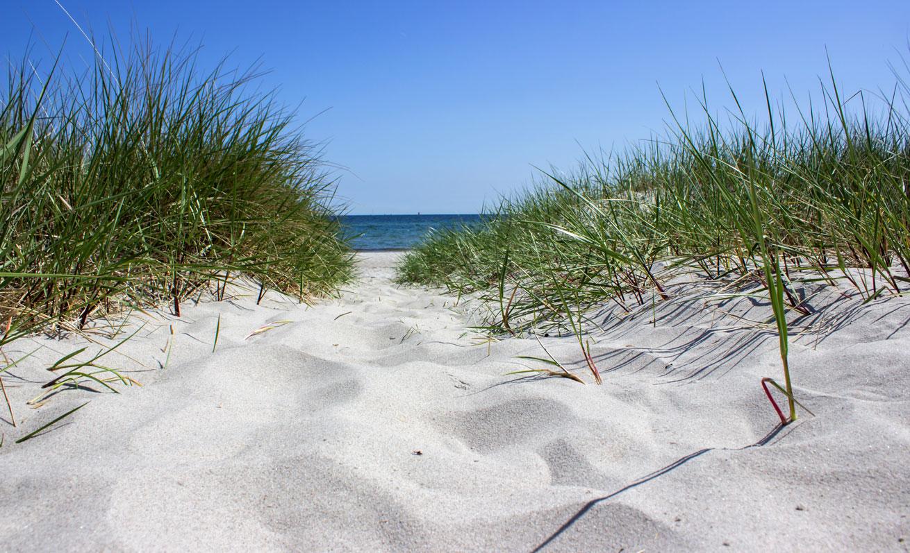 Strand in Kronsgaard