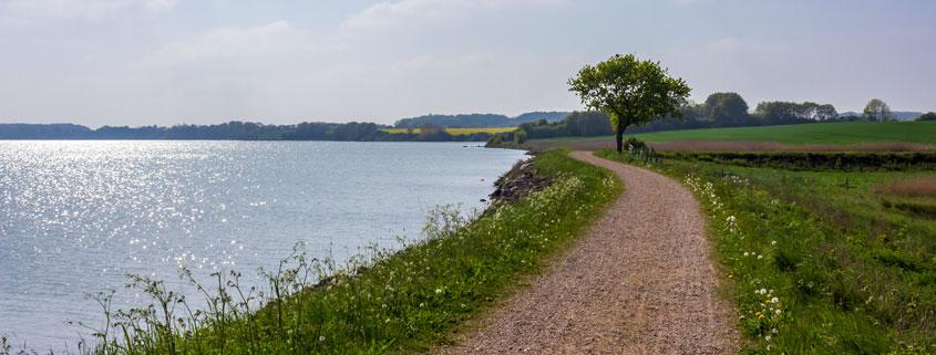 Weg entlang der Schlei in Arnis