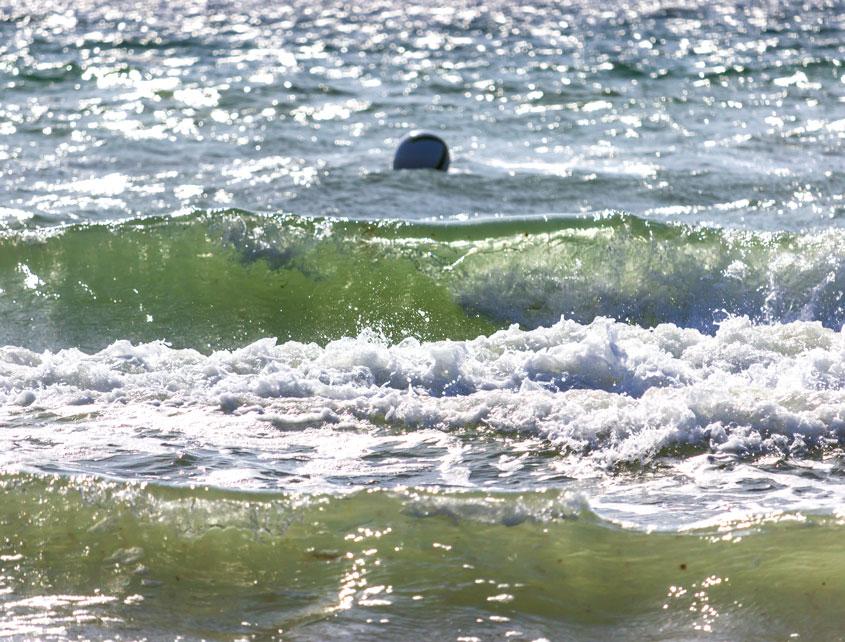 Wellen am Strand in Weidefeld