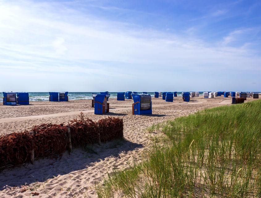 Strandkörbe und Strandgras am Strand in Weidefeld
