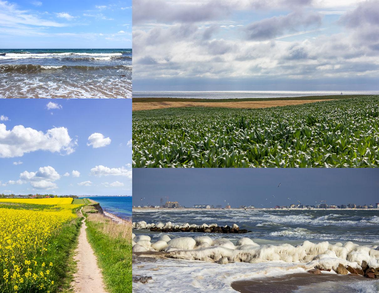 Collage aus vier Fotos - Wellen - Raps an der Steilküste - Mais an der Steilküste - Vereister Strand in Schönhagen