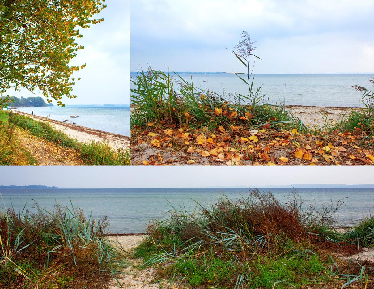 Collage mit drei Fotos - Herbst in Holnis