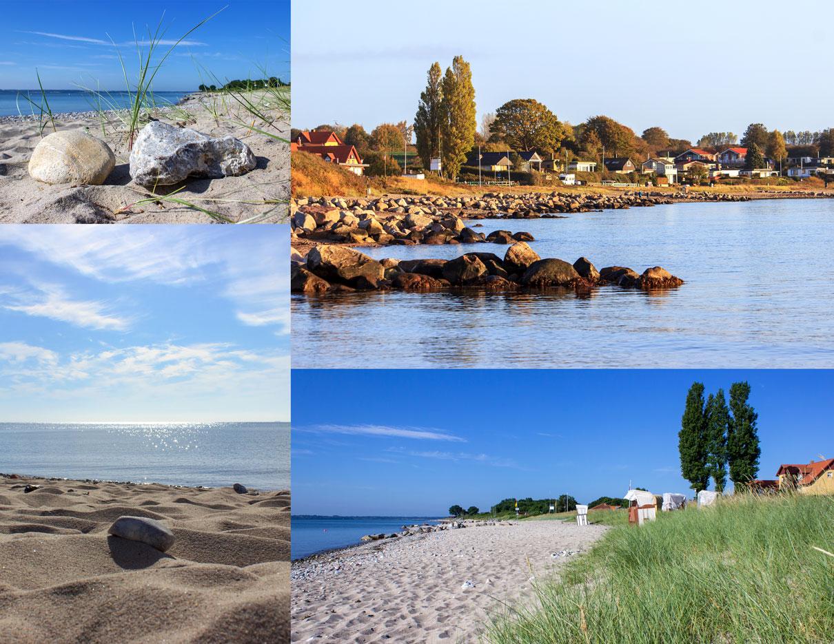 Collage mit vier Fotos - Strand im Sommer - Strandhafer und Steine - Strand im Herbst